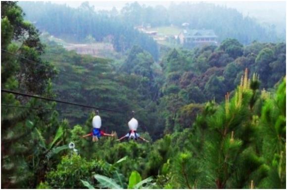 Zip line in Dahilayan (creative commons)