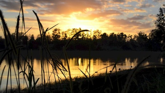 Sunshine Coast, Hinterland (Creative Commons)