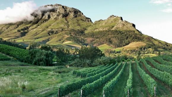 Stellenbosch_vineyards_by_Deon_Maritz